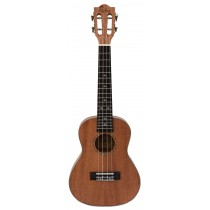 ALOHA SM2400 SOLID TOP SERIES - CONCERT