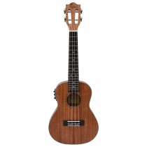 ALOHA SM2400E SOLID TOP SERIES WITH PICKUP - CONCERT