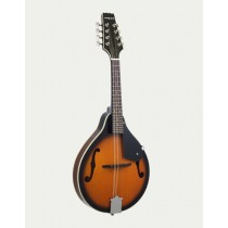 ARIA AM-20 SPRUCE TOP MANDOLIN IN BROWN SUNBURST