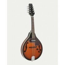 ARIA AM-20E SPRUCE TOP MANDOLIN WITH PICKUP IN BROWN SUNBURST